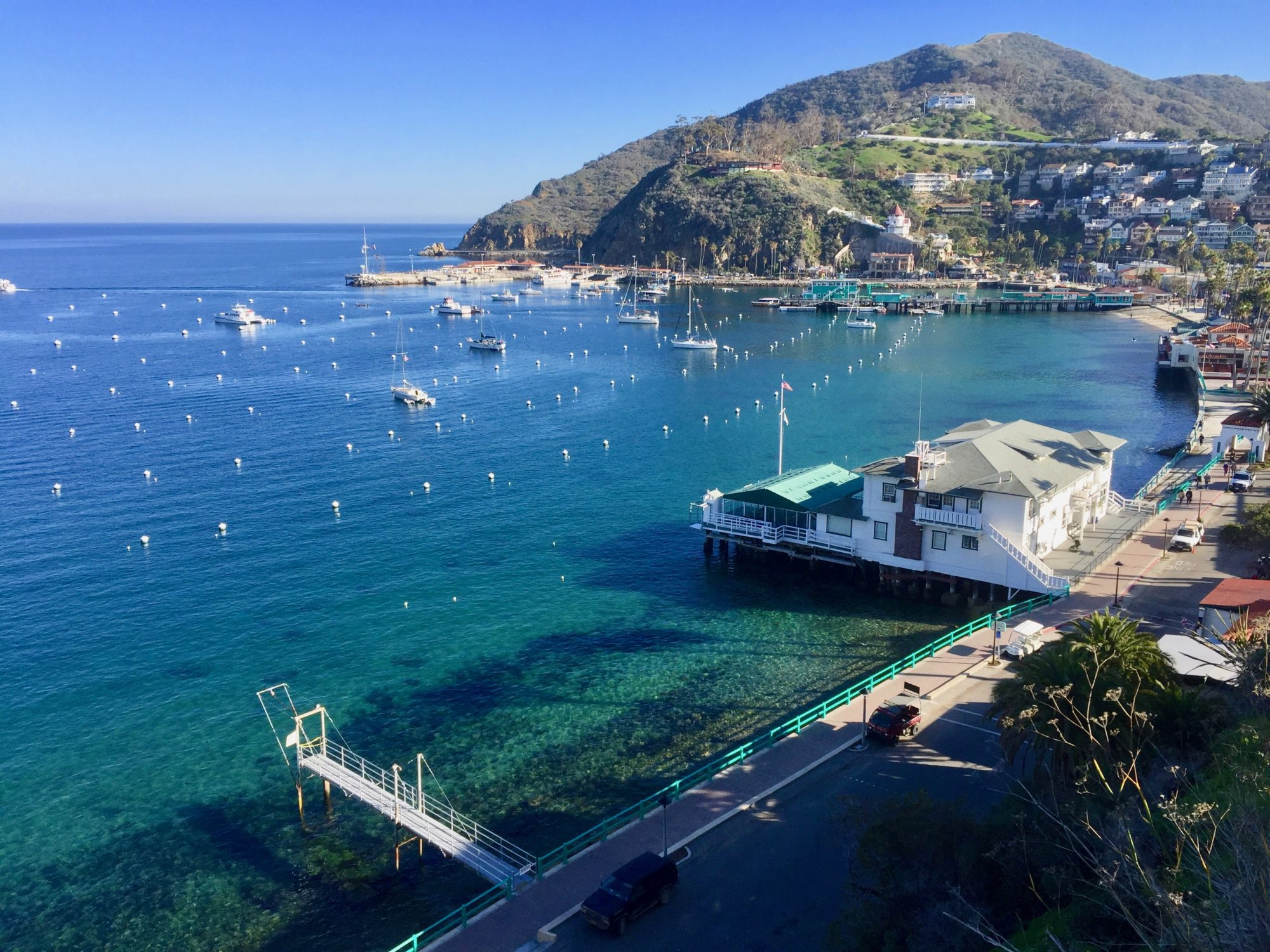 Cruise to Catalina Island